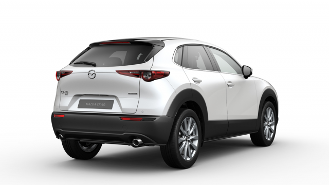 Изображение 3: Mazda CX-30 2020 100th Anniversary