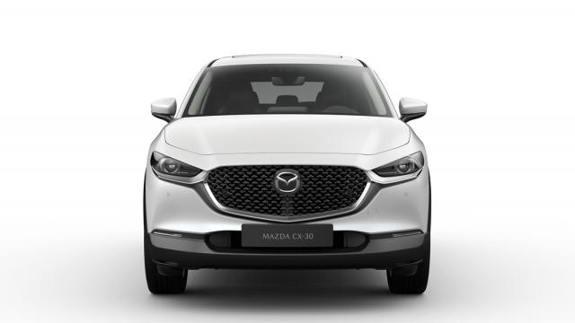 Изображение 4: Mazda CX-30 2020 100th Anniversary